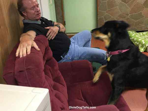 Dog looking at man for another treat